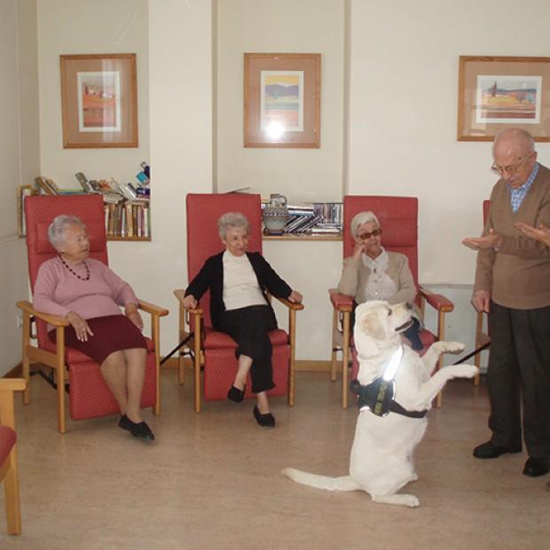 Las terapias más modernas al servicio de los mayores