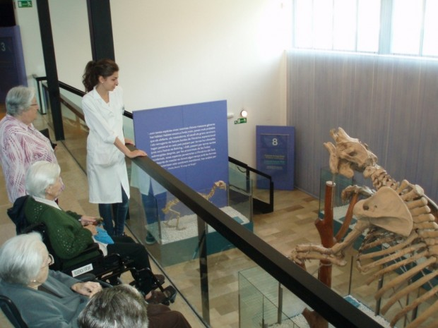 Visita al Museo de Ciencias Naturales, Jardín de los Viveros (Valencia)